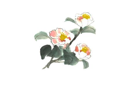 季節の花11月